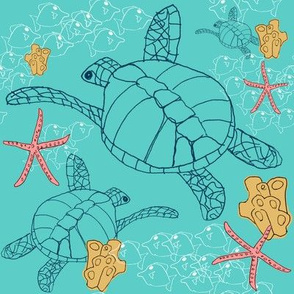 Larger Sea Turtles