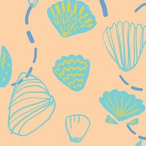 sea life: sea shell in light color
