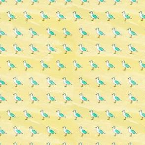Seagull Summer