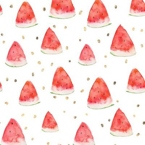 Watermelon Pieces // Gold Watercolor Splashes