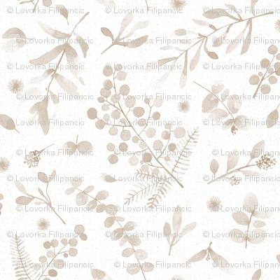 Australian native flora watercolor sunshine wattle eucalyptus beige