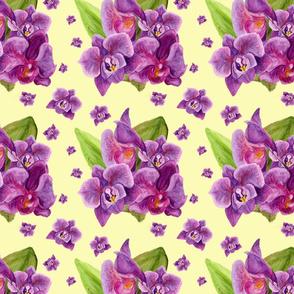 Violet Watercolor Orchid