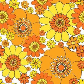 Pushing daisies orange