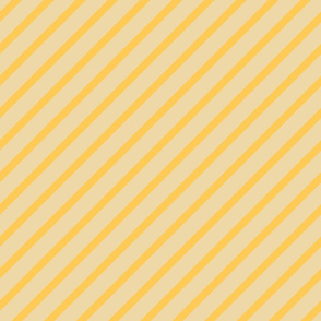 Canteloupe Diagonal Stripes
