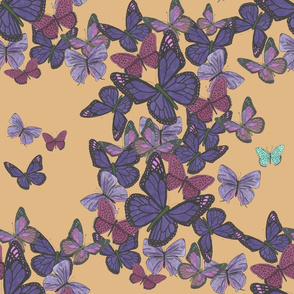 Cluster of purple butterflies on yellow