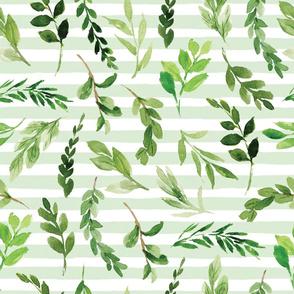 greenery on green stripe