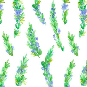 herb flowering rosemary fabric