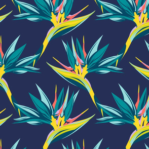 Bird of Paradise II - Navy