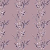 Crepe Thorns