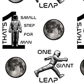 One Small Step- One Giant Leap