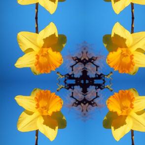 Daffodil Delight - small, mirror