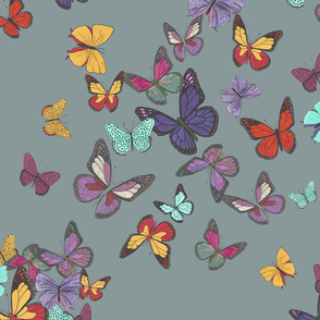 Multicolored butterflies cleand and final