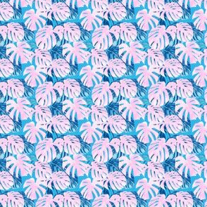 (micro scale) Monstera deliciosa  - Swiss cheese plant - pink and blue - LAD19BS