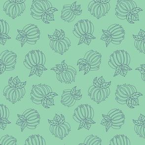 Blush Bloom Lines Mint