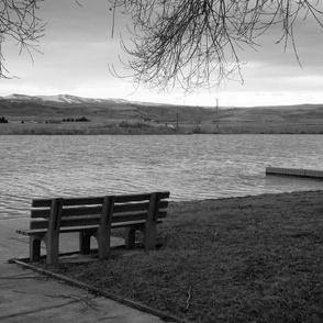 lake bench