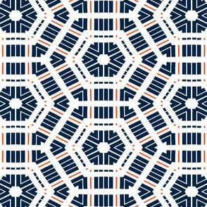 The Navy and the Orange: Hexagon Hexagon