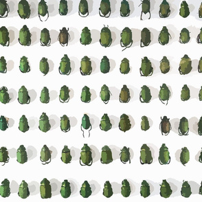 Patterns for Nerds: Beetles