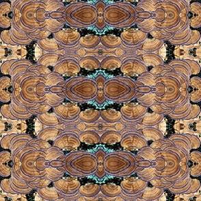 wild mushrooms mirrored