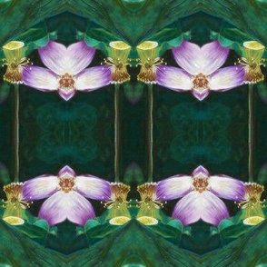 LOTUS ORCHID GEOMETRY art nouveau ORIGINAL PINK  GREEN