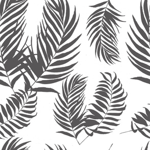 palm leaves gray  tropical