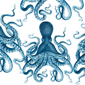 """octopus verrucosus lovey 18x18"""""""