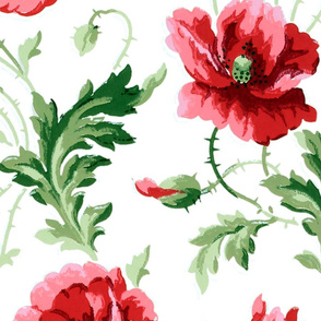 Poppies For Dorothy ~ Bright on White ~ Jumbo