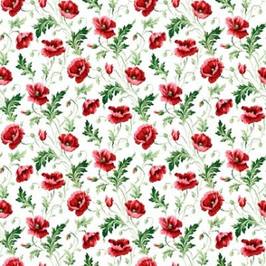 Poppies For Dorothy ~ Bright on White ~ Wee