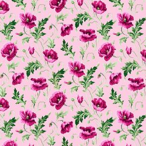 Poppies For Dorothy ~ Lulu ~ Medium