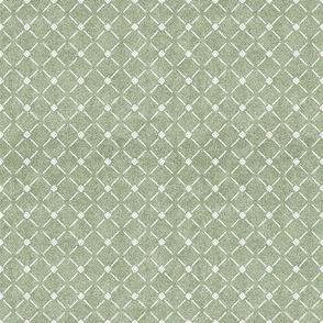 Dusty Sage Green and White Velvet Lattice