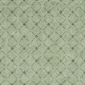 Dusty Sage Green Velvety Lattice