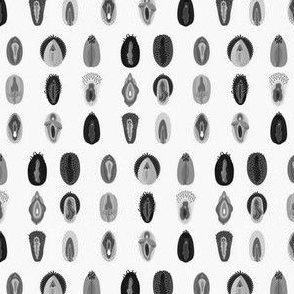 Variety of Vulva- Grey Scale
