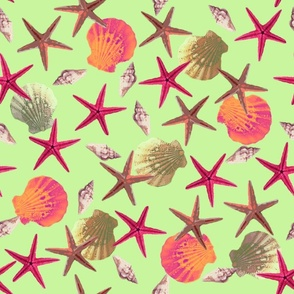 Swimming Seashells Green