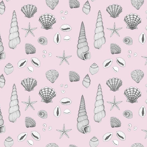 Beachcomber // black and white drawing on pink
