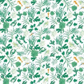 Seaweed Pattern-8-COLORS-043019_R2-02