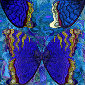 tehua mariposa