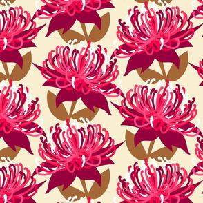 Waratah Australian Flora - cream