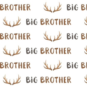big brother antlers