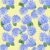 hydrangea paper yellow