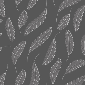 Feathers  grayscale
