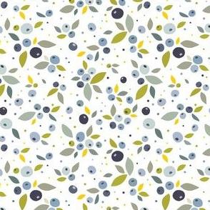 Blueberries (light)