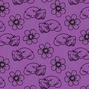 Purple Puppies and Petals