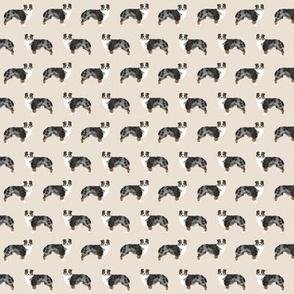 TINY - aussie dog australian shepherds dog shepherds aussie tan dog fabric