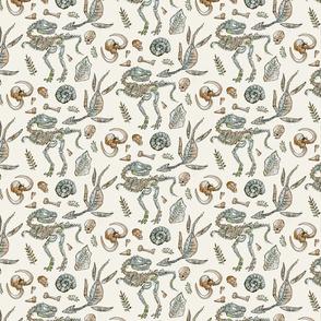 Natural History Pattern