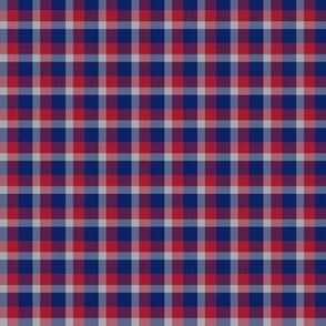 The Blue Red and Grey_Little Plaid