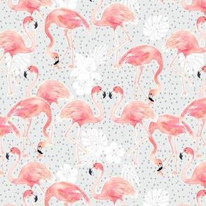 Tropicana Flamingo (grey) SML