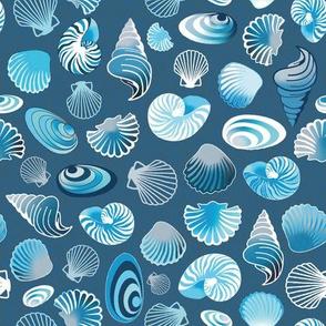 white and blue sea shells