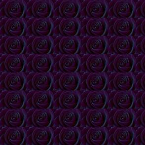 rose-4087940__340-ed