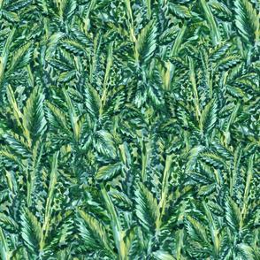 Bright Green Foliage