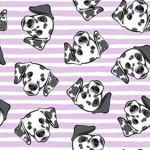 Dalmatians - purple stripes - LAD19