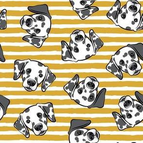 Dalmatians - gold stripes - LAD19